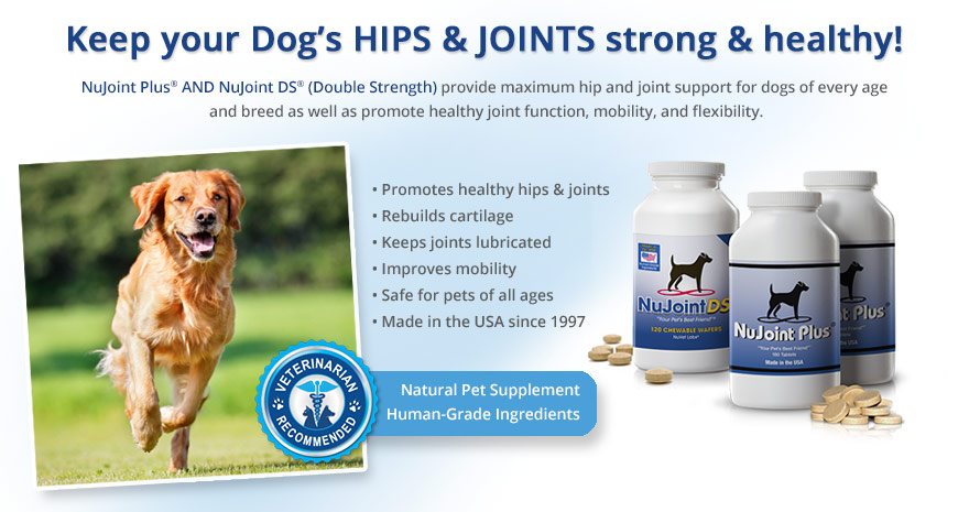 nujoint-plus-and-nujoint-ds-supplements4-revised