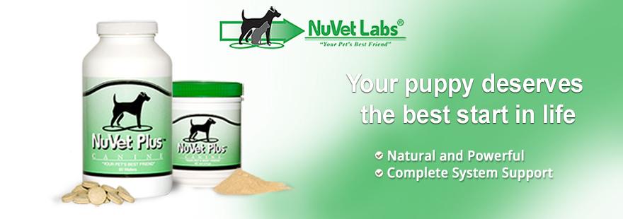 nuvet-labs-pet-supplements-header-blank