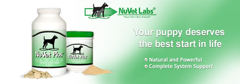 nuvet-labs-pet-supplements-header-blank