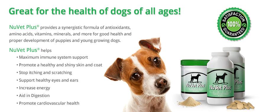 nuvet-plus-pet-supplements-vet-recommended4